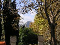 Parque San Pere. Gandia