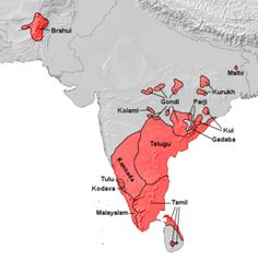 """""""Dravidian Languages in India""""; y-DNA Haplogroup T is also found amongst Dravidian people. They share genetic similarities to those East African groups which carry the y-DNA T genes. Hindu Kush & African Kush are 'cousins' to each other."""