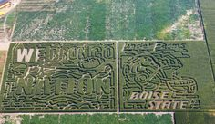 Linder Farms is sponsoring the 2013 Crop of the Year  Corn! Be sure to check out the Linder Farms Corn Maze this fall!