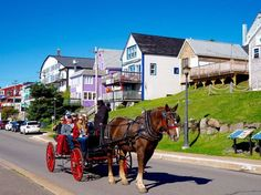 Places you absolutely cannot miss on a Nova Scotia road trip, from lobster pounds to historic UNESCO heritage sites. Also includes useful tips! East Coast Travel, East Coast Road Trip, Lunenburg Nova Scotia, Cap Breton, East Coast Canada, Nova Scotia Travel, Cabot Trail, Le Cap, Atlantic Canada