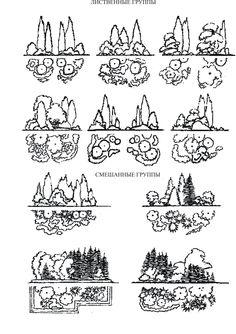 Landscape Sketch, Landscape Plans, Landscape Design, Bali Garden, Japan Garden, Architectural Trees, Architecture Concept Drawings, Tree Sketches, Vintage House Plans