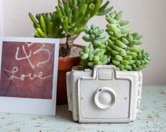 Camera Planter  cement retro home decor hipster by brooklynglobal, $30.00