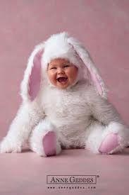 Adorable bunny babies.