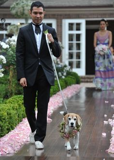 Wedding Pets: Include Your Pet In Your Ceremony