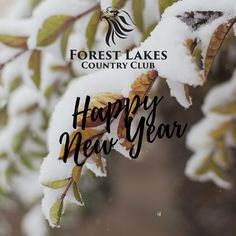 From the Forest Lakes team, we are sending best wishes for a happy New Year! We look forward to what 2019 has in store for our growing community and we have so many exciting events planned for next year. As always, we are excited to take you on this journey with us. Open House, Lakes, Happy New Year, Event Planning, Journey, Community, Events, Store, Happenings