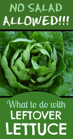 Extra Lettuce in the Fridge?  Here's what I do with it.
