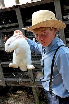 """Hare Raising"" Amish Auction"