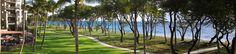 The Westin Ka'anapali Ocean Resort Villas in Maui. FABULOUS!!!