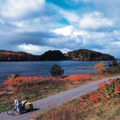 Les 10 endroits les plus féeriques où faire du vélo au Québec cet été Velo Quebec, Montreal, Country Roads, Mountains, Nature, Travel, Ride A Bike, Naturaleza, Viajes