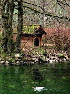 lakeside #2