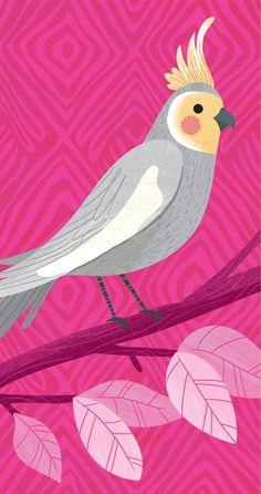 "Love my William ""Bill"" Compton. Cockatiel, Budgies, Mid Century Art, Bird Illustration, Bird Drawings, Cute Owl, Little Birds, Grafik Design, Bird Art"