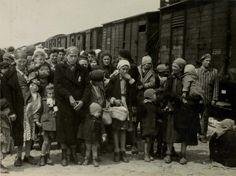 Birkenau, Poland, Women and children on the selection platform, 05/1944.                                                            Belongs to collection:                                                        Yad Vashem Photo Archive