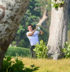harry is playing golf !