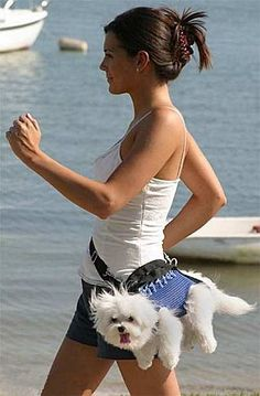 I'm picturing her jogging...and I'm picture the dog going BOING BOING BOING against her hip. Ouch.