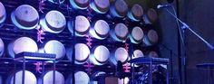 Esta primavera, Pagos del Rey Museo del Vino acogerá grandes conciertos acústicos entre barricas