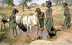 Niger. Sahel. Wodaabe nomad girls pulling water from water hole with a leather bucket and filling  goat skin bags for the family to drink.
