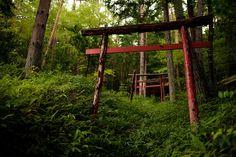 岐阜県? 神社  場所を思い出して再訪