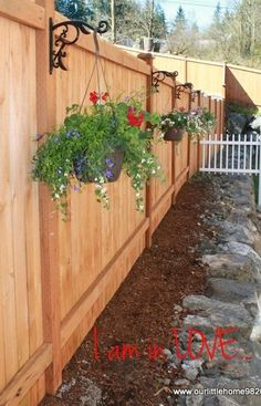Hanging flowers on east side yard with vines growing on wall and a pathway to backyard - Click image to find more gardening Pinterest pins