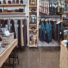 So much new Fall stuff at Stockists Worldwide and in the Webshop  #ShopDog #Shelfie #MadeinCanada @muttonheadstore