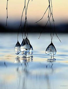 everyday a different color, beautiful gifs, soft goth, nature. images that I like and attract my attention. I hope you'll find images here for your taste too. Beautiful World, Beautiful Images, Photo Trop Belle, Foto Nature, Foto Art, Water Droplets, Rain Drops, Dew Drops, Bokeh