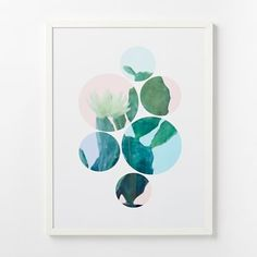 http://www.westelm.com/products/minted-for-west-elm-cactus-dots-w1776/?pkey=call-art-photography||