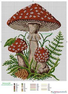 Cogumelo - Gráfico de Cozinha - A Minha EsferaA Minha Esfera