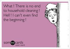 What ! There is no end to household cleaning ! Hell ! I can't even find the beginning !