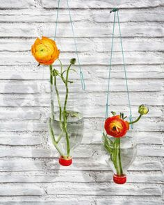 Hanging vases  made from recycled plastic soda bottles ~ would  be great decorated with stones on the bottom to hold a single centered flower or maybe with slices of limes or oranges...