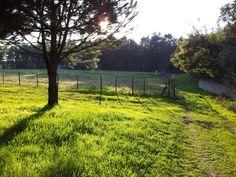 December sun in Pontével