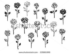 Black and white collection of rose icons in sketch style each one showing a different single long stemmed rose symbolic of love, vector illustration on white