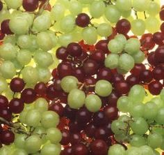 Great article on grapes and their health benefits! Lowers fevers?! Great for flu, constipation....the list is sooooo long!