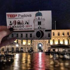 Silvia Sattin parla di #TEDxPadova su Instagram -3...domani è già qui. ❌ #tedxpadova #domaniora #tedxpadovapresent #tonygallo #igerspadova