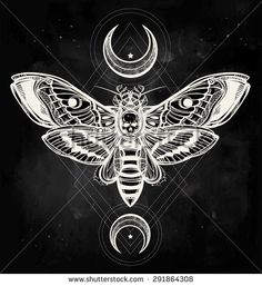 Image from http://thumb1.shutterstock.com/display_pic_with_logo/3026348/291864308/stock-vector-death-s-head-hawk-moth-with-moons-geometry-lines-design-tattoo-art-isolated-vector-illustration-291864308.jpg.