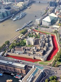 Looking forward to planting some ceramic poppies in the moat of the Tower of London Friday 10th August 2014 with my cousin Wendy. Each poppy represents a Brit that died on the front lines during 1st World War. Heart breaking