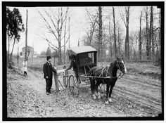 Horse and buggy US rural mail delivery in Photo taken by Harris & Ewing. Vintage Pictures, Old Pictures, Old Photos, Antique Photos, Horse And Buggy, Photo Vintage, Rare Images, Interesting History, Historical Pictures