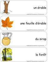 vocabulaire en lien avec le thème Core French, French Resources, French Immersion, Classroom Activities, Teaching Tools, In Kindergarten, Spring, Crafts, Quebec Winter Carnival