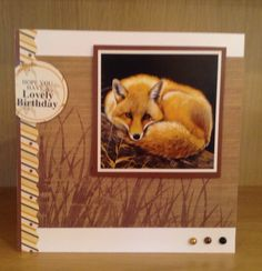 Birthday card featuring fox image from Pollyanna Pickering Fox Images, Hunkydory Crafts, Easy Cards, British Wildlife, Create And Craft, Animal Cards, Masculine Cards, Wild Animals, Paper Crafting