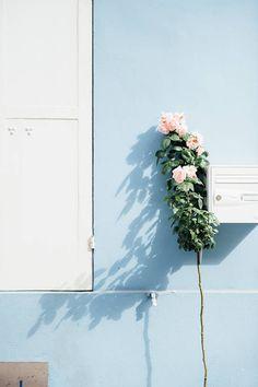 Flowers Spring Pastel Inspiration 31 Ideas For 2019 Light Blue Aesthetic, Blue Aesthetic Pastel, Everything Is Blue, Ciel, Belle Photo, Pastel Colors, Bleu Pastel, Pastel Pink, Color Inspiration