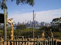Best Views in Sydney