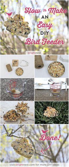BrightNest | Make a Cookie Cutter Bird Feeder in 8 Simple Steps