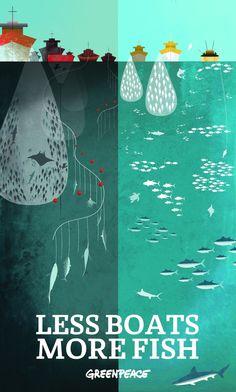 Twitter / Greenpeace : Less boats, more fish: ...