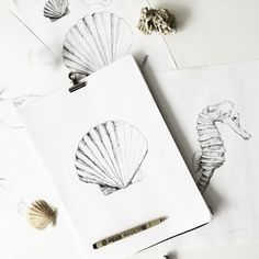 An overview of all the inkylines drawings and sketches. Drawing Sketches, Art Drawings, Flower Outline, Marine Biology, Sea Creatures, How To Draw Hands, Ink, Instagram Posts, Painting