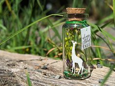 Aim High, Stand Tall, Get Spotted. Always Stand Tall. Tiny message in a bottle. Handmade Gifts For Her, Diy Gifts, Aim High, Message In A Bottle, Floating Frame, Stand Tall, Green Backgrounds, Boyfriend Gifts, Valentine Gifts