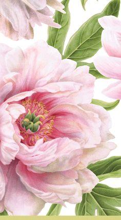 Caspari Blush Pink Floral Printed 3-Ply Paper Guest Towels Wholesale 13070G