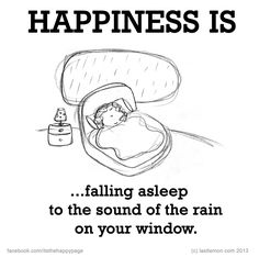 Happiness is...Falling asleep with the sound of rain on your window.