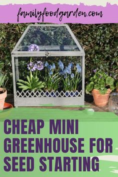 Instead of buying seeds for the garden consider starting your own seeds. It's fun and cheap. Family Food & Garden provides you with a comprehensive guide with a checklist to shop for what you need to buy to put together a mini greenhouse for seed starting. There are numerous ideas to build a DIY mini (and even) portable greenhouse. With so many options you are bound to find the right set up that suits you best. Remember to have fun! Learn more… #diygreenhouse #minigreenhouse #see