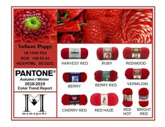 Valiant Poppy - Pantone Color Trend Report Autumn Winter 2018 2019 Fashion trend analysis and yarn matching by mamapode Tight Crochet Vermilion Color, Mango Mojito, Types Of Red, Pink Peacock, Trend Analysis, Fall Winter, Autumn, Pantone Color, Cheap Fashion