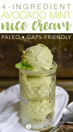 Full of healthy fat, vitamins and minerals, this paleo and GAPS-friendly Avocado Mint Nice Cream is a treat you don't have to feel guilty eating! Paleo Dessert, Healthy Dessert Recipes, Gluten Free Desserts, Whole Food Recipes, Diabetic Snacks, Healthy Treats, Eating Healthy, Healthy Food, Clean Eating