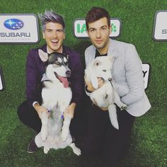 """Pin for Later: Joey Graceffa and His Rescue Pup Have the Most Adorable Bond Where does Wolf sleep? """"He never would sleep on the bed until I got my new puppy Storm. He must be feeling jealous, so he is claiming the bed."""""""