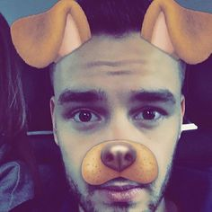 Can it get any more adorable?  : @liampayne
